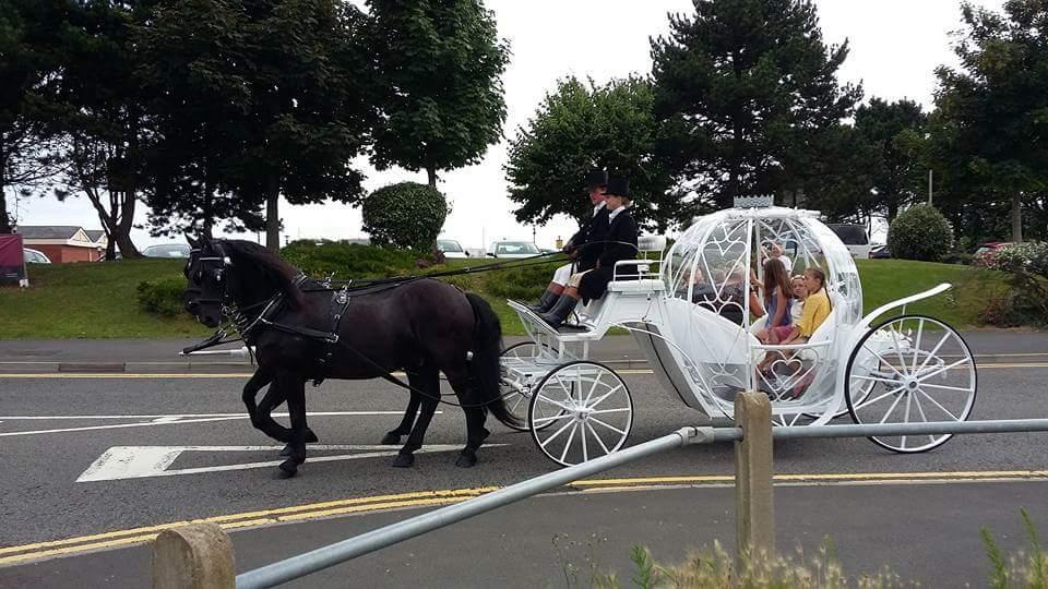 Cinerella-Childrens-Party-Fairytail-Horse-drawn-Carriage