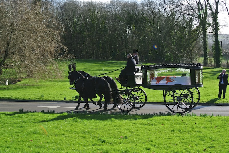 Kilvey-Carriage-Horse-Drawn-Carriage-Services-Wales-Cardiff-Bristol