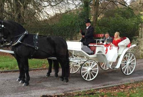 Kilvey-Carriages-Horse-Drawn-Carriage-Service-Carmarthen-Llanelli-Swansea-White Classic