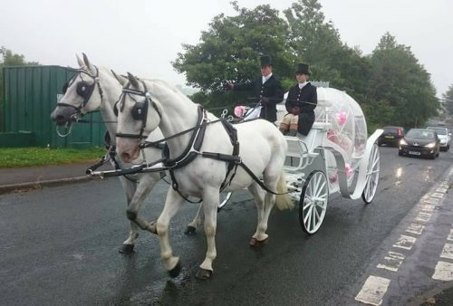 Kilvey-Carriages-Llanelli-Carriage-service-Horse-drawn-carriages