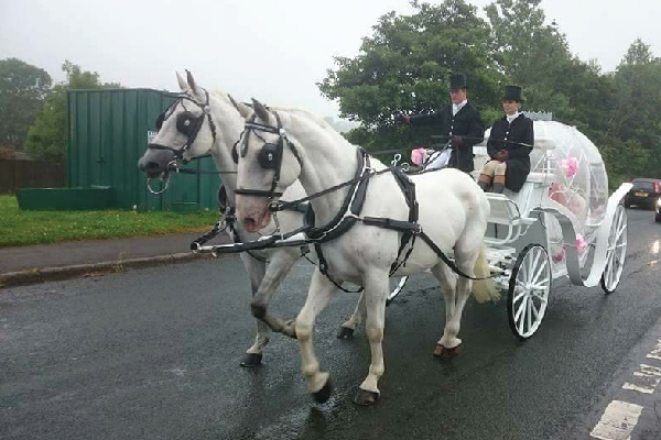 Kilvey-Carriages-Special-Events-Services-Gallery-Images-10