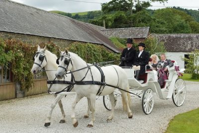 Kilvey-Carriages-Wedding-Carriages-Service-South-Wales
