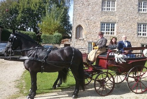 Kilvey-Carriages-Weddings-Horse-Carriages-Swansea-Llanelli-Cardiff-Traditional
