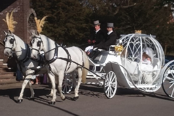 Kilvey-Carriages-Weddings-Services-Gallery-Images-01