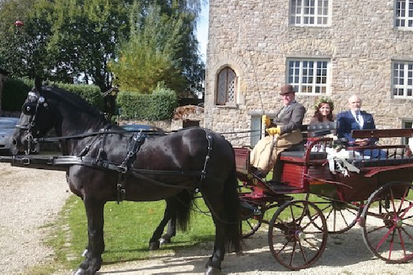 Kilvey-Carriages-Weddings-Services-Gallery-Images-02