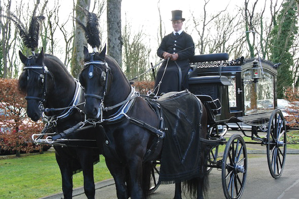 Kilvey-Carriages-Weddings-Services-Gallery-Images-08