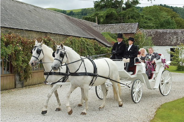 Kilvey-Carriages-Weddings-Services-Gallery-Images-09