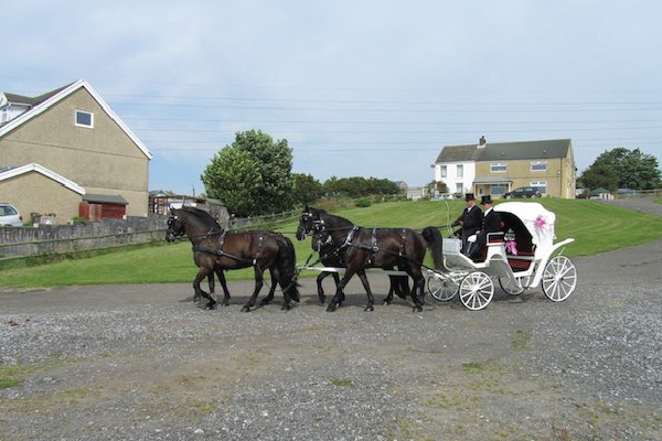 Kilvey-Carriages-Weddings-Services-Gallery-Images-11