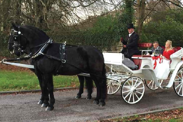 Kilvey-Carriages-Weddings-Services-Gallery-Images-13