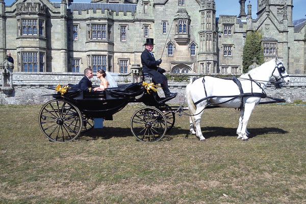 Kilvey Carriages Victoria Horse Carriage Wedding Swansea